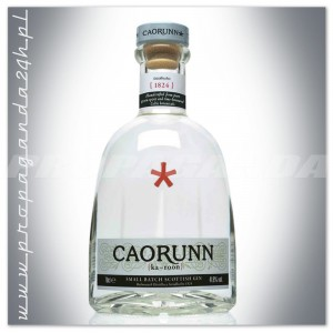 CAORUNN SMALL BATCH SCOTTISH GIN 0,7L