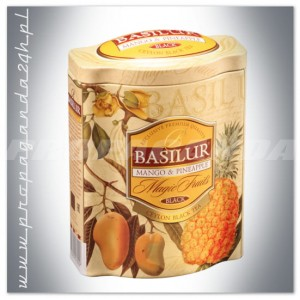 MAGIC FRUITS MANGO & PINEAPPLE PUSZKA 100G